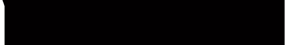 VISUEL Logo